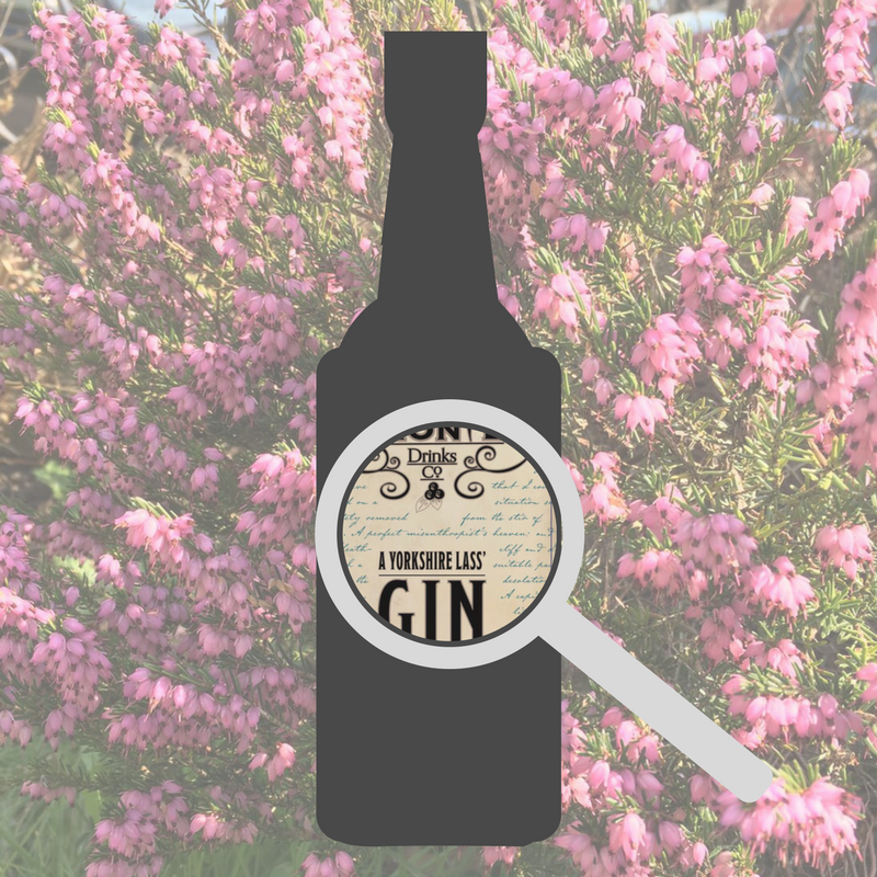A SNEAK PEEK AT OUR BRONTE-INSPIRED YORKSHIRE LASS' GIN LABEL!